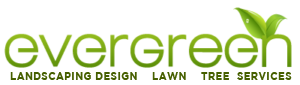 Evergreen Landscaping Orlando